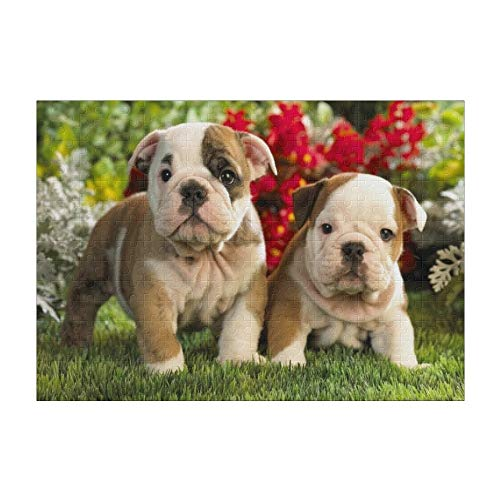 Puppies English Bulldog 300 Pieces Jigsaw Puzzle (15 in x 10 in) Toy for Adults Kids Educational Gift Home Decor