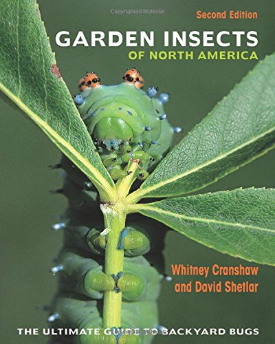 Compare Textbook Prices for Garden Insects of North America: The Ultimate Guide to Backyard Bugs - Second Edition 2 Edition ISBN 9780691167442 by Cranshaw, Whitney,Shetlar, David