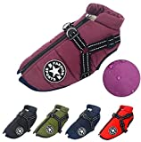 LucaSng Dog Jacket with Harness, Waterproof Warm Dog Winter Coat for Small Medium Large Dogs, Cozy Dog Sport Vest For Labrador Big Dog Chihuahua French Bulldog (XL,Purple)