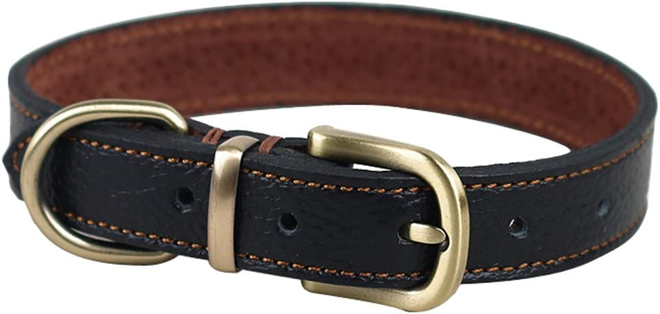 Rantow Comfortable Padded Handmade Leather Our shop most popular - Dog Collar Classic Fashionable