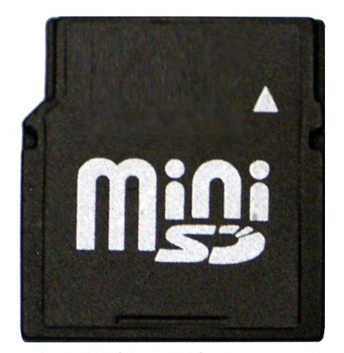 Nilox MINI-SD-2GB memoria flash MiniSD - Tarjeta de memoria (2 GB, MiniSD, 7,85 MB/s, 5,5 MB/s, Negro)