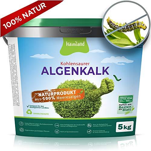 Halmland Algenkalk - Verbazingwekkende versterking van de buxusboom tegen buxusmotten en Bacillus thuringiensis - Prophylaxe en redding bij plaag - 5 kg premium zeefing - incl. expertips | Tuinkalk