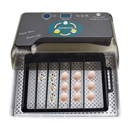 ZHCOM 12 Hühnereier,Inkubator Vollautomatisch,LED Beleuchtung,Temperaturanzeige und Feuchtigkeitsregulierung,Inkubator Brutmaschine Brutapparat Brutkasten für Hühnerküken Ente Vögel