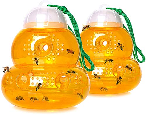 Wasp Trap Bee Traps Jar Hornet Trap Yellow Jacket Trap Attracts Hornets Yellow Jackets Bees Wasps...