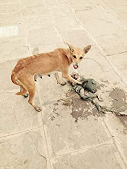 [Nick Sun]のGrey Holes: Nick Sun (English Edition)