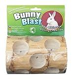 Bunny Blast Yucca Chew Toy