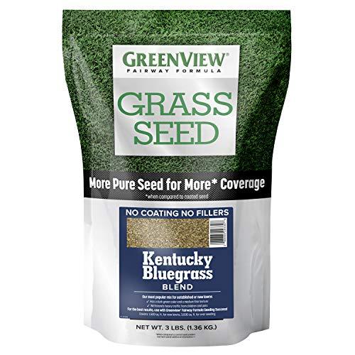 GreenView 2829352 Kentucky Bluegrass Blend Fairway Formula Grass Seed, 3 lb