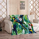 Tcoapy Tropical Parrot Throw Blanket Colorful Parrots and Exotic Flowers Tropical Parrot Bird Sherpa Fleece Bedding Bedspread Flannel Warm Microfiber Sofa Blanket Couch Bed 40' x 50'