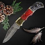 QueenClass Cuchillo Plegable Cuchillo de Bolsillo de Acero de Damasco Extra Afilado - Hecho a Mano Cuchillo Deportivo, de Exterior, de Supervivencia - Serie ROVFISK (Negro-Rojo)