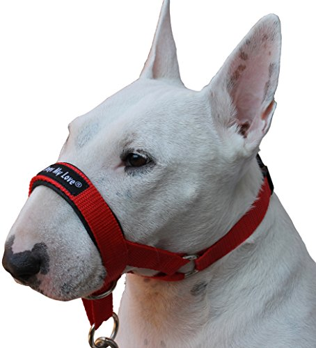 dog harness nose - 8