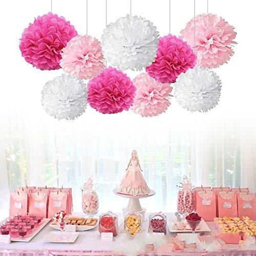 18pcs Tissue Hanging Paper Pom-poms, Flower Ball Wedding Party Outdoor Decoration Premium Tissue Paper Pom Pom Flowers Craft Kit(Pink & White))