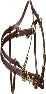 Berlin Custom Leather Beta Endurance Halter Bridle - Brown, Horse