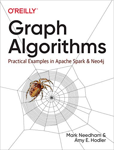 Graph Algorithms: Practical Examples in Apache Spark and Neo4j (English Edition)