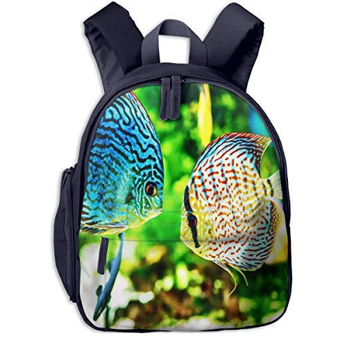 Kinderrucksack Kleinkind Jungen Mädchen Kindergartentasche Fisch Symphysodon Diskus Aquarium Backpack Schultasche Rucksack
