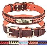 Didog - Collares para perro de piel personalizada con placa de latón grabada – Cuero trenzado suave acolchado personalizado – Collares ajustables para mascotas para perros pequeños, medianos y grandes