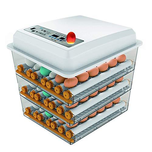 Wxnnx Incubadora de Huevos 150~180 Huevos, incubadoras de Huevos de Calentamiento Inteligente con volteador automático, Adecuado para incubar Patos, Aves, Gansos, Palomas, Huevos