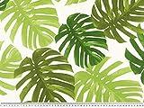 Zanderino ab 1m: Dekostoff, Pflanzen Blätter,