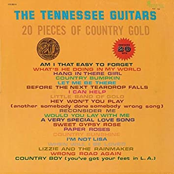20 Pieces of Country Gold - 20 Hits