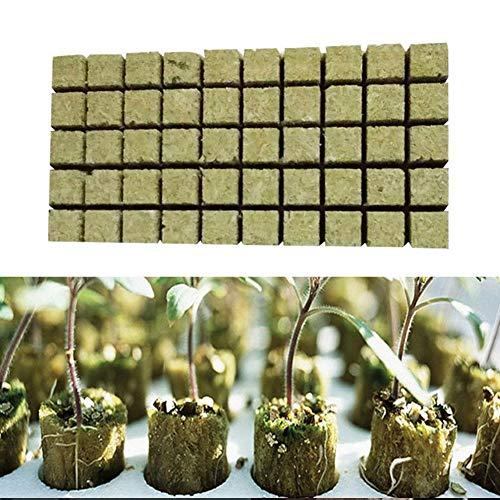 franktea Steinwolle Rockwool Starter Cubes Wachsen Blöcke 36 36 40MM Ausbreitung Klonen Rockwool Cubes