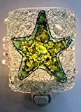 Starfish Shell Recycled Bottle Glass Night Light Nightlight Unique Island Beach Lighting Decor