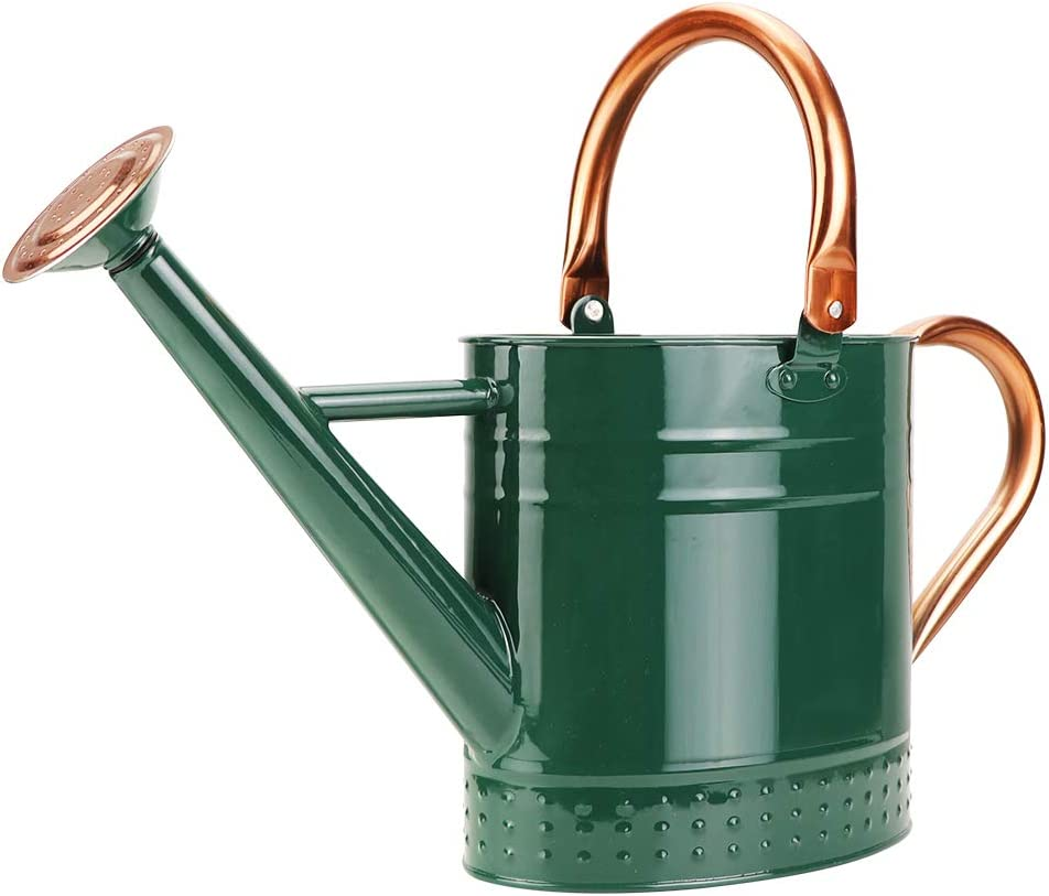Megawodar 1 Gallon Galvanized Steel Watering Can with Embossed Design (Green)