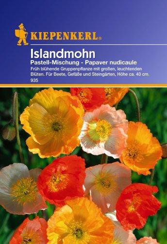 Kiepenkerl Islandmohn, Pastell-Mischung