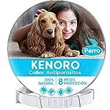 KENORO Collar Antiparasitos Perro, Collar Antipulgas Perro contra Garrapatas y Pulgas Antiparasitario para Mascota Pequeño Mediano Grande
