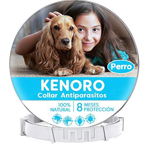 KENORO Collar Antiparasitos Perro, Collar Antipulgas Perro c