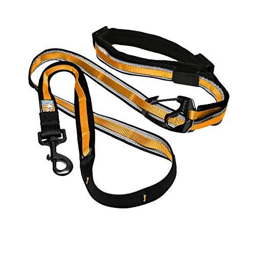 Kurgo 6 in 1 Hands Free Dog Leash  Reflective Running Belt Leash for Dogs  Crossbody & Waist Belt Leash  Carabiner Clip  Padded Handle For Training, Hiking or Jogging  Quantum Leash  6 colors, M (K01131)