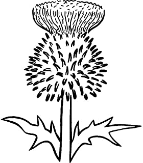 Azeeda A8 'Thistle' Unmounted Rubber Stamp (RS00024083)