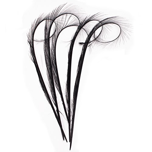 Lawliet 5pcs 10-12' Burnt Pheasant Quill Feather Millinery Hat Trimming Craft B071 (Black)
