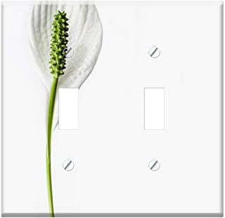 Best peace lily double flower Reviews