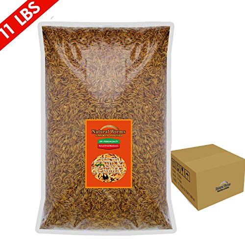 FROLIC WINGS 11 lbs Mealworms, 100 Percent Non-GMO Dried...