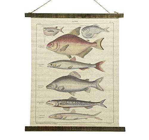 Schulwandkarte Wandbild Fische Lachse Biologie Nostalgie Leinwand 72x55cm