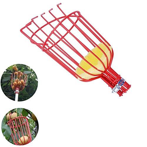 Fruitplukkop, Orchard Picking Tool, Orchard Metal Harvester-mand met kussen voor het plukken van tuin Vers fruit (alleen kop, paal niet inbegrepen)