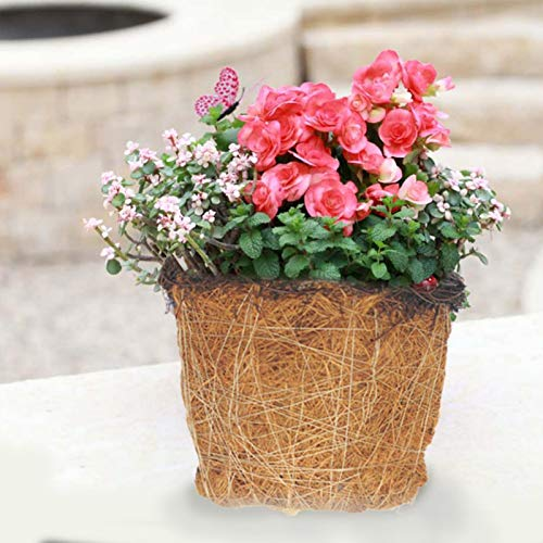 Lucky-all star Coco Coir Flower Pots - Mini Cesto di Piante succulente Coco Coir Liner Cesti di Fiori Fioriera Naturale per la Decorazione del Portico del Giardino di casa (12x12 x10cm)