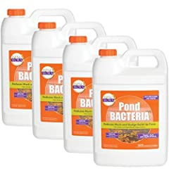 Eliminates muck, dead leaves, odors and other organic matter that can harm a pond or lake Super charges naturally occurring bacteria to consume micronutrients Safe for humans, fish, livestock, pets, birds, swimming, consumption and irrigation 1 gallo...