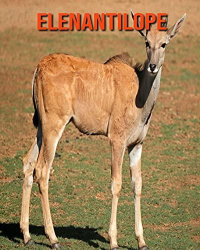 Elenantilope: Schöne Bilder & Kinderbuch mit interessanten Fakten über Elenantilope