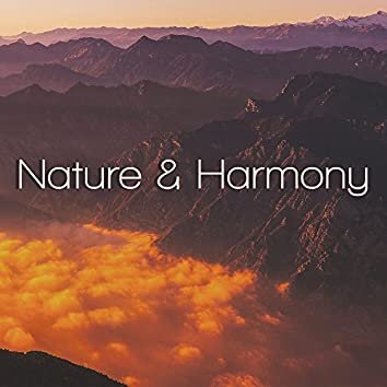 Nature & Harmony – Calmness, New Age Music, Peaceful Mind, Calming Music, Nature Sounds, Zen, Meditation