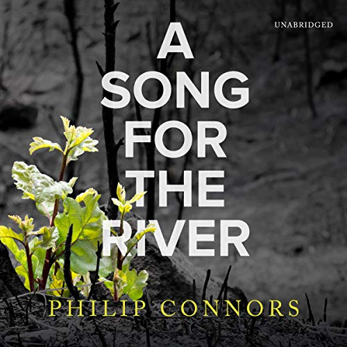 A Song for the River audiobook cover art