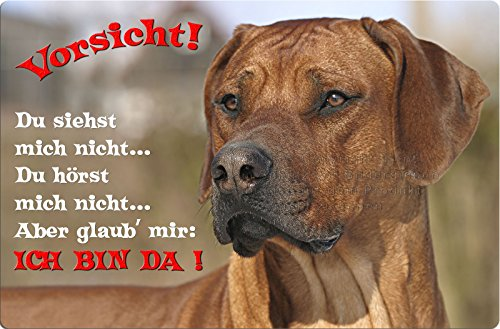 +++ RHODESIAN RIDGEBACK - Metall WARNSCHILD Schild Hundeschild Sign - RRB 35 T2
