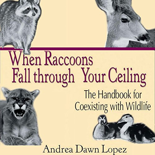 When Raccoons Fall Through Your Ceiling: The Handbook for Coexisting With Wildlife Audiobook By Andrea Dawn Lopez cover art