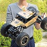 WGFGXQ 1/14 Juguetes para niños Todo Terreno Radiocontrolado Vehículos de Carreras Todo Terreno Camiones Buggy Truco eléctrico Coche RC para niños Niños Niñas Juego de Interior al Aire Libre Cumple