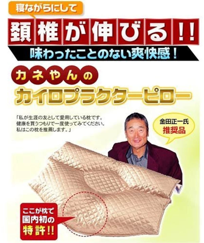 発行かんたん足枷【枕 安眠枕】 カネやんのカイロプラクターピロー (カバー付き) ピンク