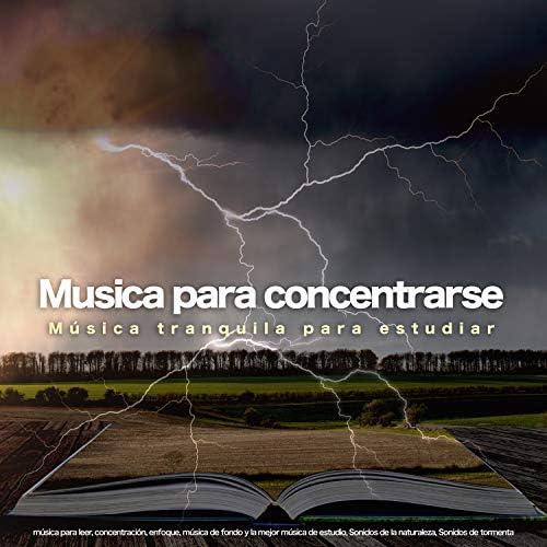 Musica para Concentrarse, Musica Para Leer & Fondo de la lectura