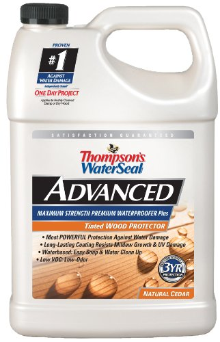 Thompsons Waterseal A21761 1 Gallon Natural Cedar Tinted Wood Protector Low VOC