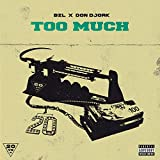 Too Much (feat. BZL) [Explicit]