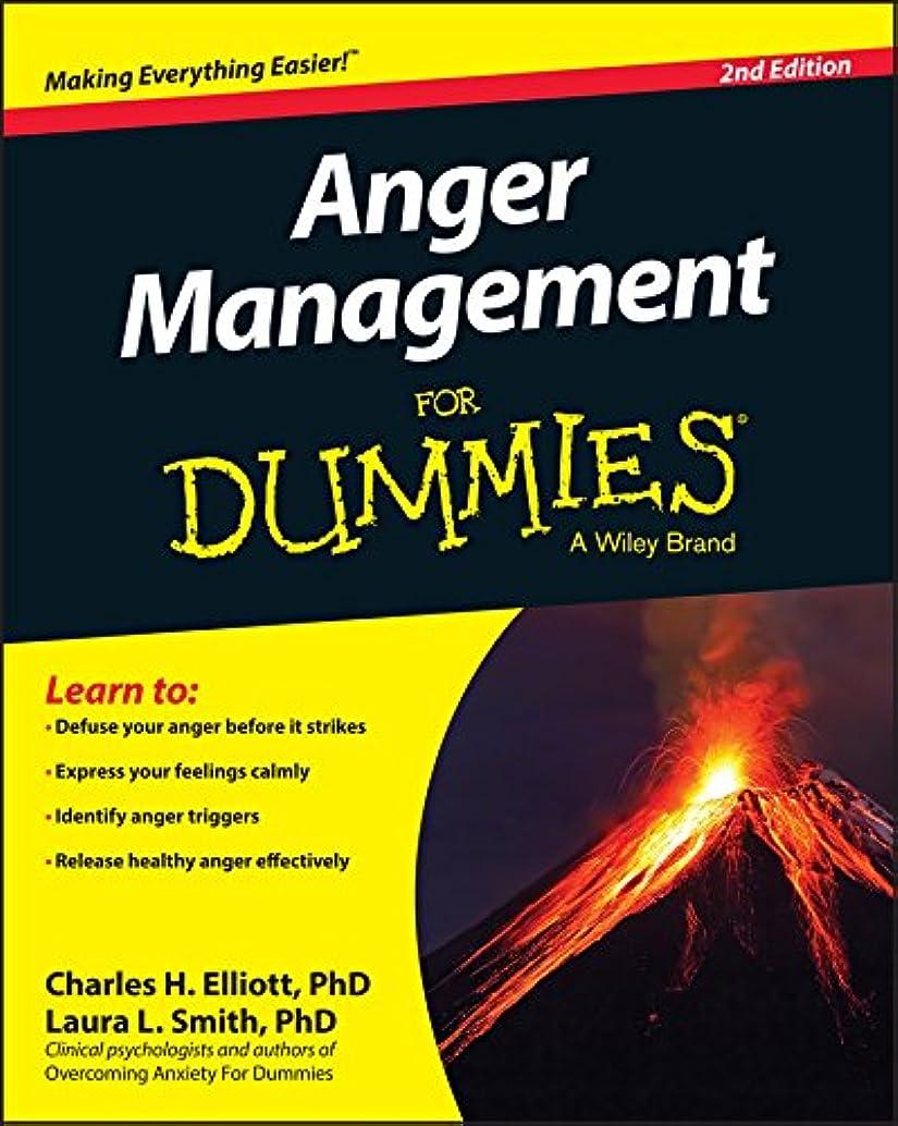 フィッティング化学薬品レッドデートAnger Management For Dummies (English Edition)