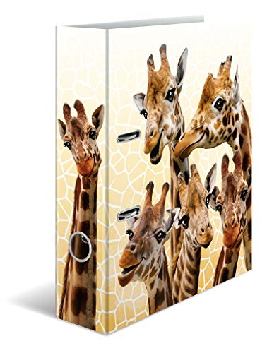 HERMA 19951 Motiv-Ordner DIN A4 Exotische Tiere Giraffenfreunde, 7 cm breit aus stabilem Karton mit hochwertigem Innendruck und Namensfeld, Ringordner, Aktenordner, Briefordner, 1 Ordner