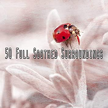 50 Full Soothed Surroundings